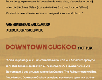 Concert Indie Rock  Pause Longue   Dowtown Cuckoo