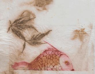 Exposition éphémère - Moraczewska et Martigne - photo, gravure - galerie de la boutique Peau d'Anne