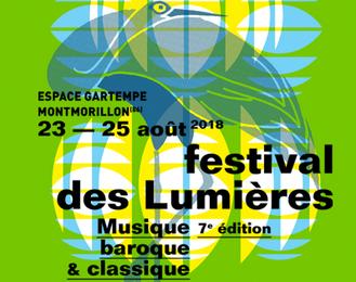 Festival des Lumières 2018