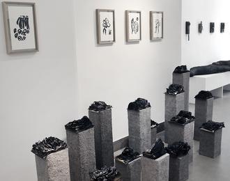 Galerie Vivoequidem Paris 6ème