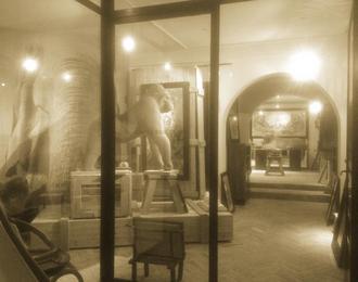 Galerie Wildlife Art Aix en Provence