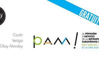 La PAM en concert : Vertigo, Okay Monday, Cardri