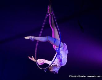 Le Cirque de Noël Maximum Production