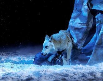 Le Tournoi de Merlin : spectacle équestre médiéval et fantastique