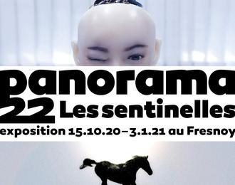 Panorama 22 - Les sentinelles