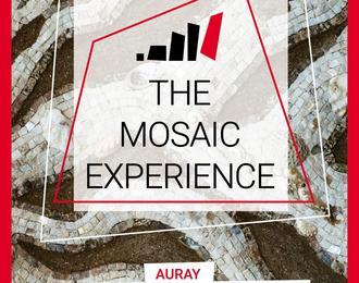 The Mosaic Experience, biennale internationale de mosaïque contemporaine