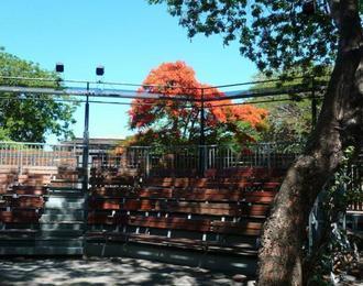 Théâtre sous les arbres Le Port