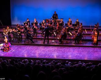 Trois siècles d'Opéra | Orchestre de chambre nouvelle Europe