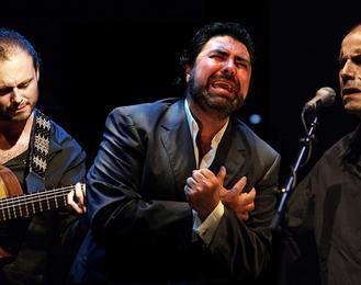 Trovaores - Antonio Campos & Antonio Placer Trio
