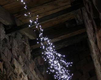 Visite de l'exposition Les Chambres de Lumière