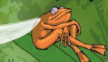 Chouxy Frog