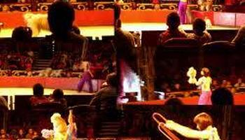 Grand Cirque de Saint Petersbourg