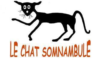 Le chat somnambule