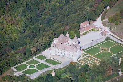 1000 Ans D'histoire En Dauphiné à Virieu