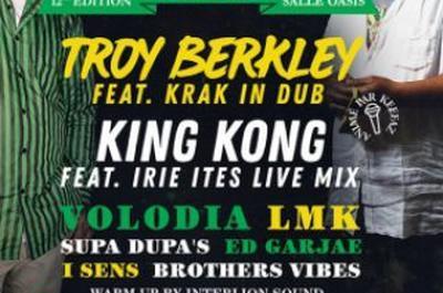 Spring Reggae Fest #12 à Le Mans