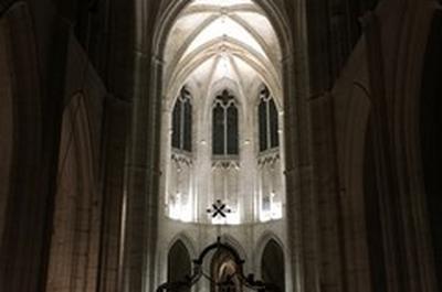 Abbaye Saint-Germain - Visite guidée du site monastique en nocturne à Auxerre