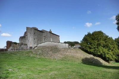 À La Découverte Du Château De Hérisson à Pougne Herisson