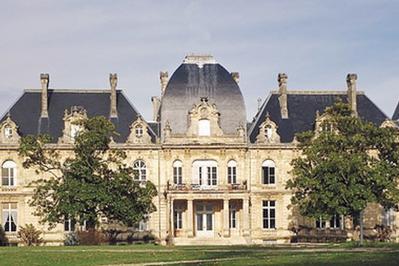 À La Découverte Du Château Dulamon à Blanquefort