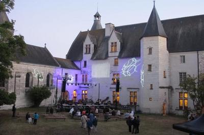 À La Découverte Du Château Et De La Chapelle Saint-hilaire à Guesnes