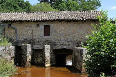 A la découverte du patrimoine architectural et natruel du village de Castelnau-Médoc à Castelnau de Medoc