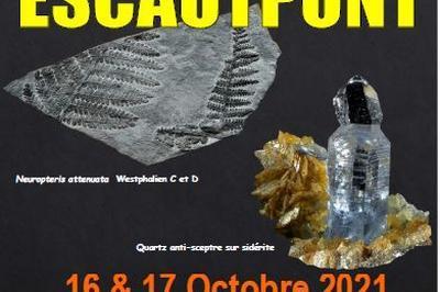 Bourse aux minéraux et fossile à Escautpont