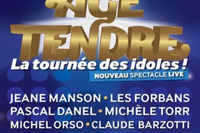 Age Tendre-La Tournee Des Idoles ! à Riorges