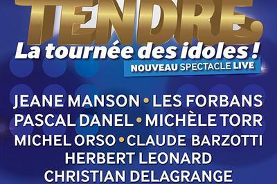 Age Tendre - La Tournee Des Idoles! à Paris 15ème