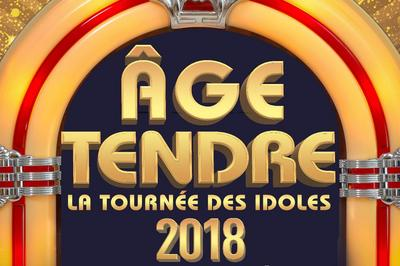 Age Tendre - La Tournee Des Idoles ! à Le Mans