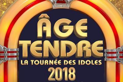 Age Tendre - La Tournee Des Idoles ! à Lyon