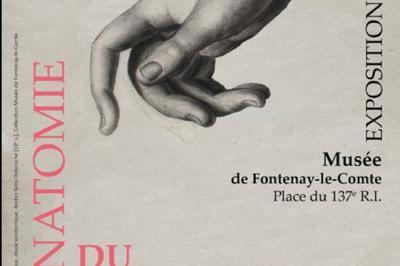 Anatomie Du Mouvement à Fontenay le Comte