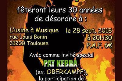30 ans de Rock dans ta… à Toulouse