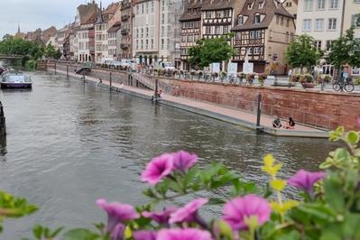 Apprenez-en Davantage Sur L'histoire D'un Quai Emblématique De Strasbourg