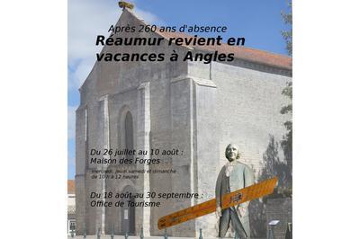 Après 260 Ans D'absence, Réaumur Revient À Angles