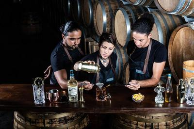 Atelier Cocktail Avec Barmen Professionnels à Sainte Luce
