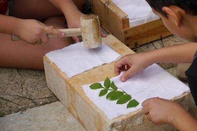 Atelier De Découverte De La Couleur Végétale à Lauris