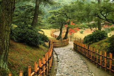 Atelier-démonstration De Barrières Japonaises à L'arboretum à Chatenay Malabry