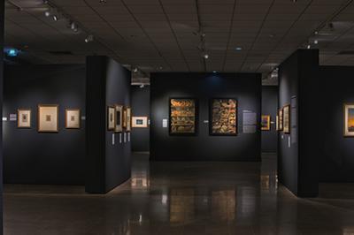 Ateliers Des Adultes Au Musée Léon Dierx à Saint Denis