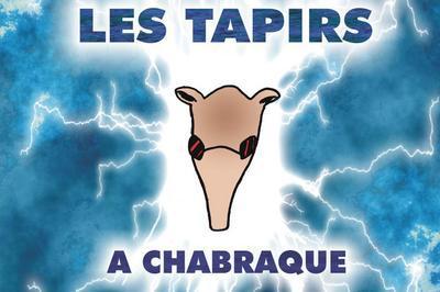 Les Tapirs à Chabraque à la Fête de la musique à Chalon sur Saone