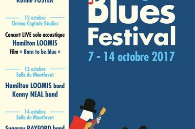 Avignon Blues Festival - Pass A