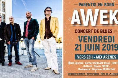 Awek Blues - Le Groupe De Blues Toulousain à Parentis en Born