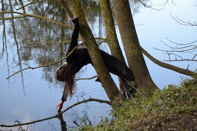 Balade Botanique Dansée Et Musicale à Flers