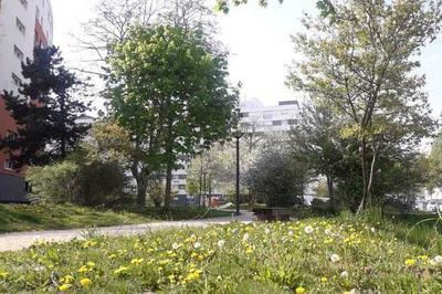 Balade Nature Au Coeur Du Quartier De Cronenbourg à Strasbourg