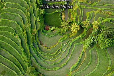Bali à Thiers