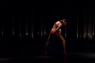 Ballet De Lyon à Suresnes