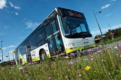 Bibus : Visite Guidée De L'atelier De Maintenance Bus à Brest