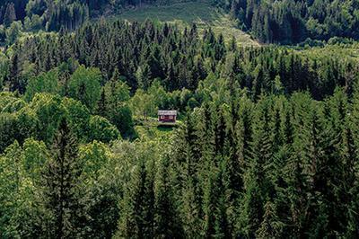 Black Mountain à Auray