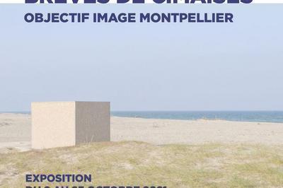 Brèves de Cimaises à Montpellier