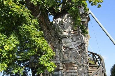 Café-philo : Le Chêne D'allouville à Allouville Bellefosse
