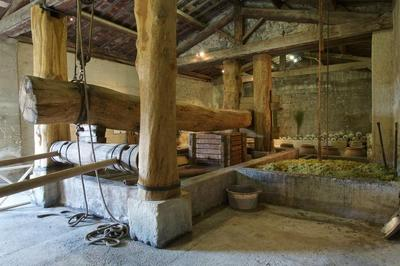 Cave Gallo-romaine Reconstituée à Beaucaire