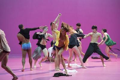 Ccn Ballet De Lorraine à Lyon